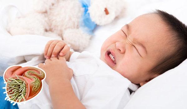 Giun đũa là ký sinh trùng thường gặp phải ở trẻ em